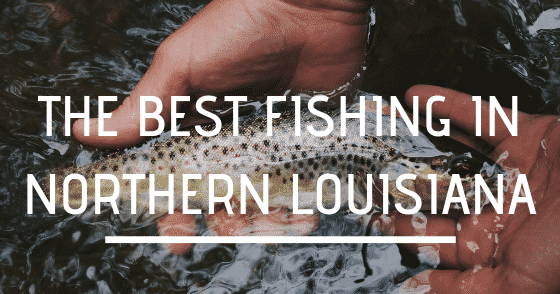 The Best Fishing in Northern Louisiana, Louisiana Bed and Breakfast Association