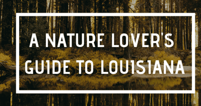 A Nature Lover's Guide to Louisiana, Louisiana Bed and Breakfast Association