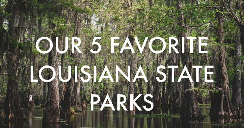 Our 5 Favorite Louisiana State Parks, Louisiana Bed and Breakfast Association